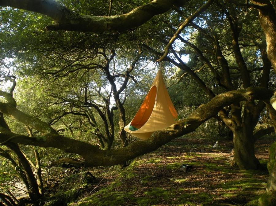 Objects Of Design Hanging Tree House