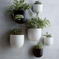 Ceramic Wall Planters - Mad About The House