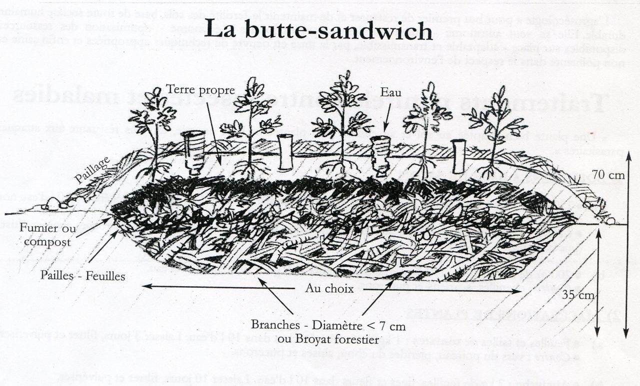 butte-sandwich007.jpg