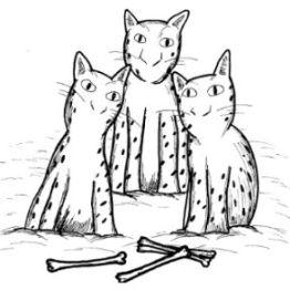 Three Snow Leopards