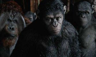 planet-apes-ftr