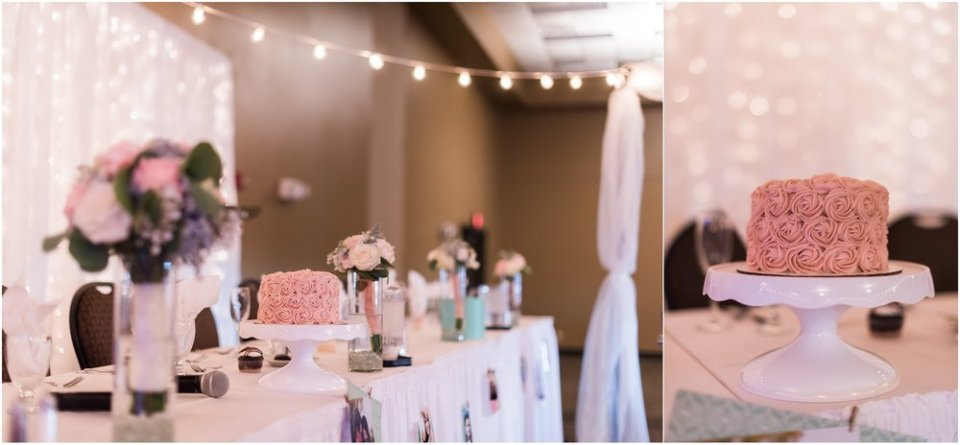 Blush pink single tier wedding cake | Maddie Peschong Photography