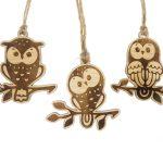 Owls 02 scaled