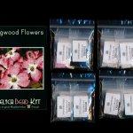 Dogwood Flowers Larger Panel Peyote Bead Pattern PDF or KIT DIY-Maddiethekat Designs