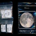 moon larger panel peyote bead pattern pdf or kit diy space planet maddiethekat designs 2
