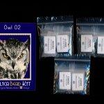 Owl 02 Small Panel Peyote Seed Bead Pattern PDF or KIT DIY Bird-Maddiethekat Designs