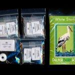 white stork small panel peyote bead pattern pdf or kit diy bird maddiethekat designs 2