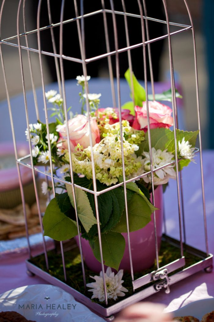 Marie Antoinette-birdcage-sm