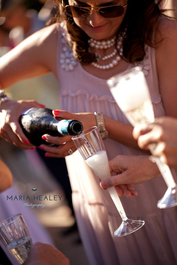 bubbly-champagne-recipe-cocktail-ideas-marie-antoinette-party-champagne