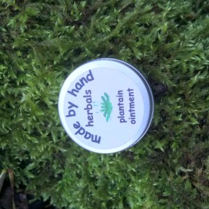 plantain ointment | hedgerow | herbal | traditional | remedies | medicine
