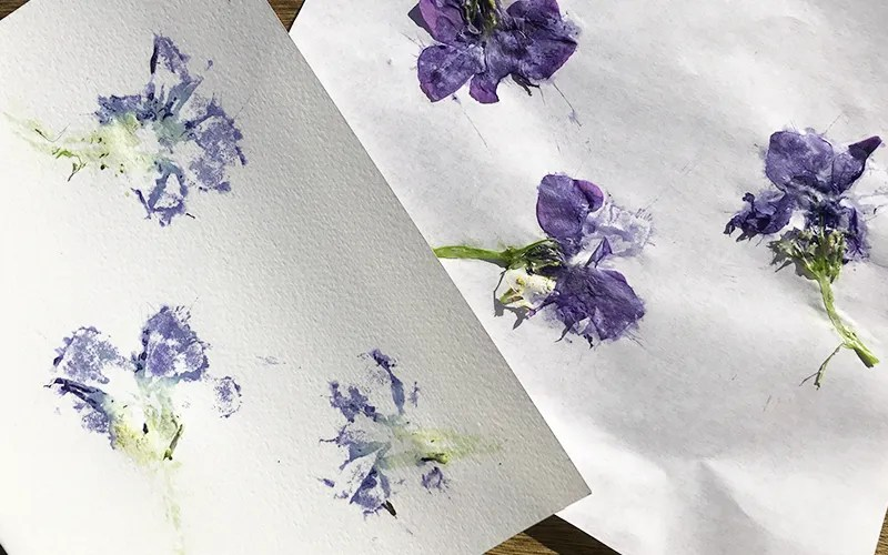 bashed botanical art diy STEAM