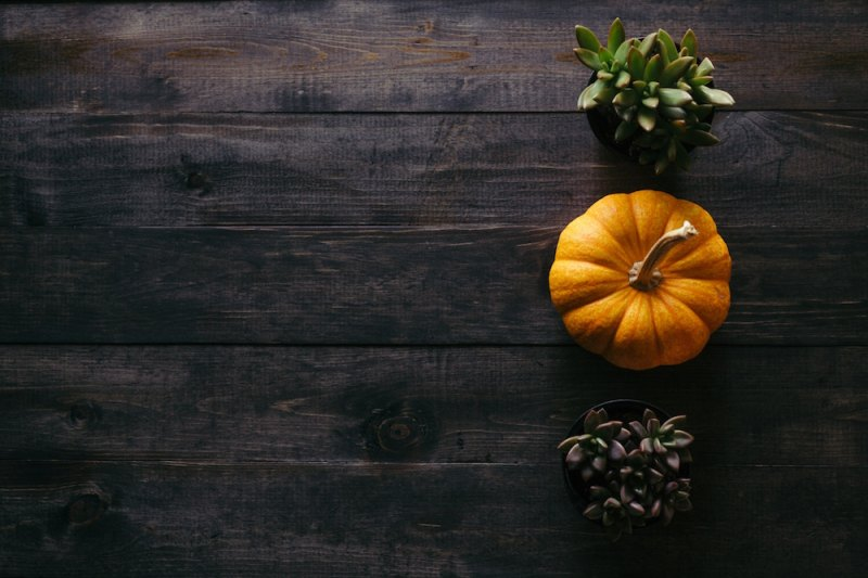 Fall is here! The holidays are right behind it. This year I wanted to prepare myself for what is coming. Here are the places I'm giving thought to, my house, my heart, my health and the holidays.
