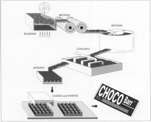 In chocolate manufacture, the cocoa beans are first roasted, during which the bean shells break away from their center (the nibs). Next, the nibs undergo broyage, a crushing process that takes place in a grinder with revolving granite blocks. The following step, refining, further grinds the particles and makes the chocolate mass smoother. The mass is then conched, or ground and agitated in a huge open vats. During this process, which can take from 3 hours to 3 days, other ingredients such as sugar and vanilla can be added. The mass is then poured into molds of the desired shape, cooled, cut, and wrapped.