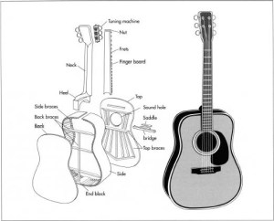 How guitar is made  manufacture, making, history, used