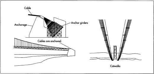 Rope Bridge Designs