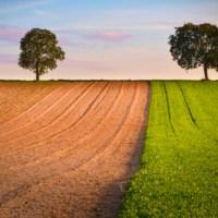 """E' online la puntata di Made in Italy """"Il biogas e lo sviluppo sostenibile""""."""