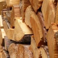 Abbiamo dimenticato come si fa il legno?