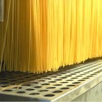 Les pâtes aux légumineuses ? Elles sont protéiques et pauvres en glucides
