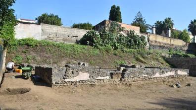 Pompei Fondo Iozzino Set18 fonte Pap (7)