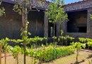 Torna a splendere il verde di Pompei: viaggio tra giardini, orti, frutteti e vigneti ritrovati