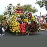 Madeira Flower festival - Festa da Flor da Madeira
