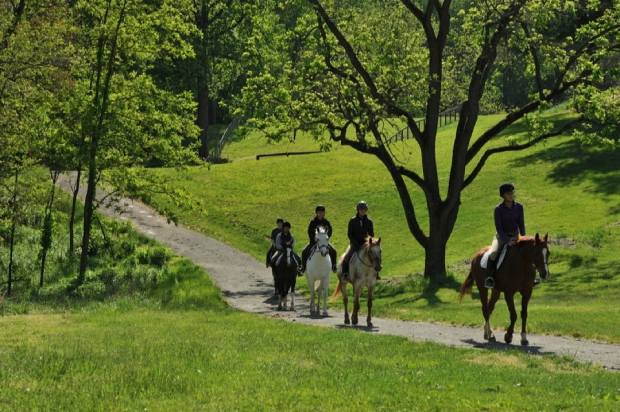 Equestrian Center Madeira