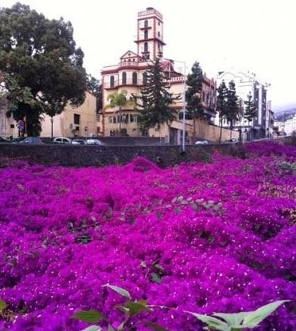 Festival of Wine , Embroidery and Handicrafts of Madeira – funchal