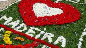 Flower Festival 2013 (12)