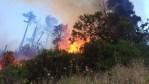 Fire reignites in Serra d'Agua