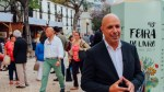 Free WIFI coming to Downtown Funchal
