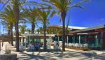 Group Cafe Teatro may pull investment from Porto Santo