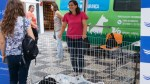 IDALINA PERESTRELO WANTS TO INCREASE ANIMAL ADOPTIONS IN THE MUNICIPAL KENNEL