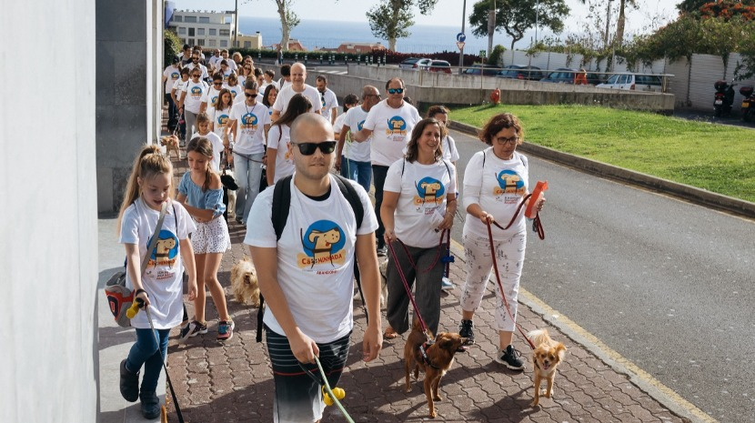 NEW FREE DOG VACCINATION CAMPAIGN STARTS TOMORROW IN FUNCHAL