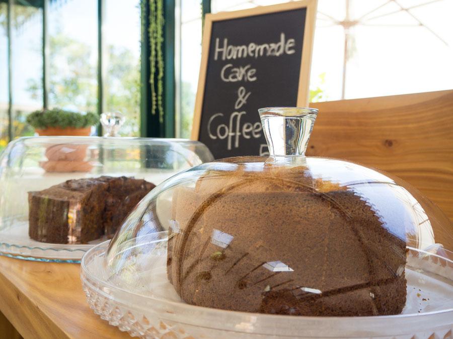 greenhouse coffee roaster monte taarten