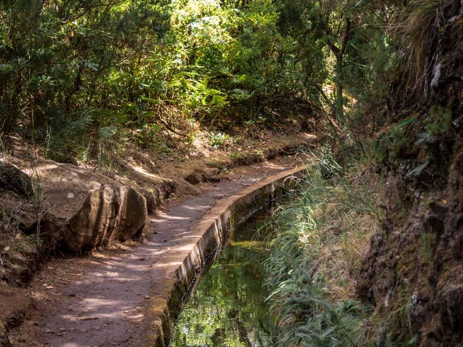lagos da madeira levada