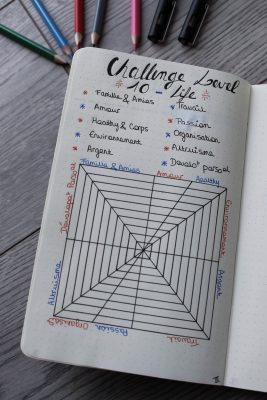 bullet journal bujo challenge level 10 life mademoiselle e