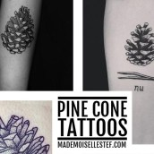 tattoo idea pine cone