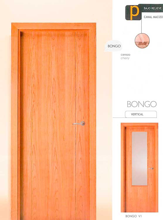 Puerta Modelo Bongo