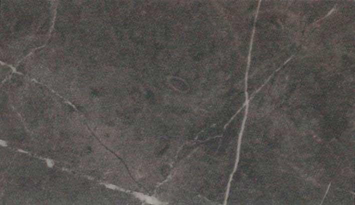 Encimera Modelo F 9483 Ferro