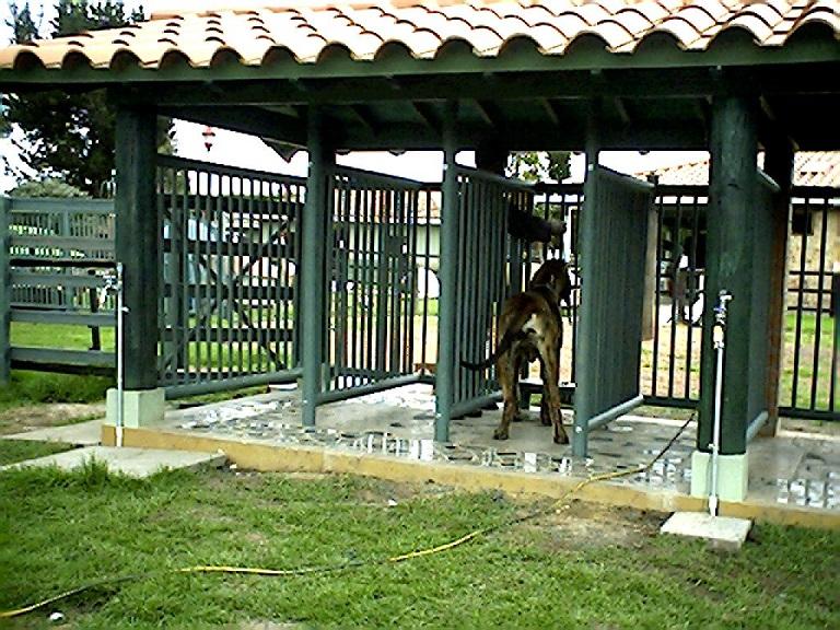 33 Casas Perros Mascotas Perreras pritorias Corrales