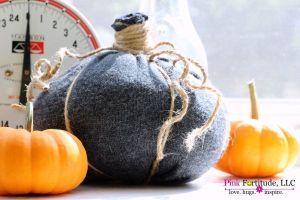 Farmhouse Pumpkin DIYs