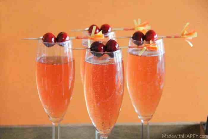 Cranberry Watermelon Champagne Cocktail | Holiday Cocktails | Cranberry Cocktails | Champagne Cocktails | www.madewithhappy.com