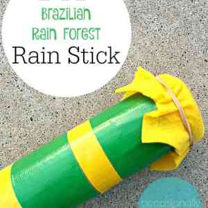 Brazil - Rain Stick - Occasionally Crafty