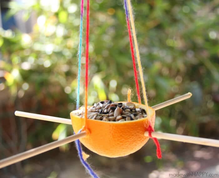 DIY Birdfeeder from an Orange! Fun Summer Kids Craft Activity via Made With Happy - Making a bird feeder out of an orange | Kids Bird Feeders | Kids Summer Activities