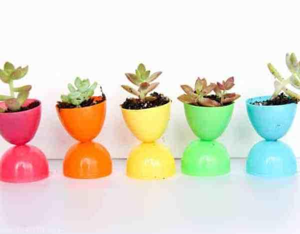 Succulent Egg Pots