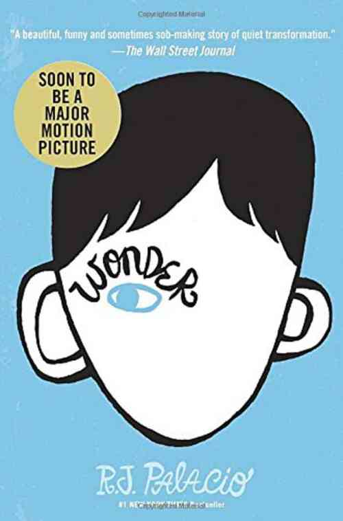 Wonder. Top 10 Chapter Books for young readers. We're sharing our top picks for young readers that are looking for some great chapter books. www.madewithhappy.com