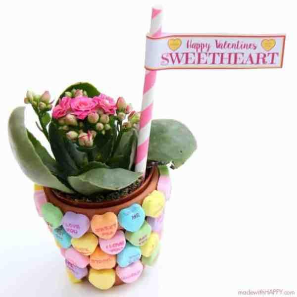 Sweetheart Flower DIY + Free Printable