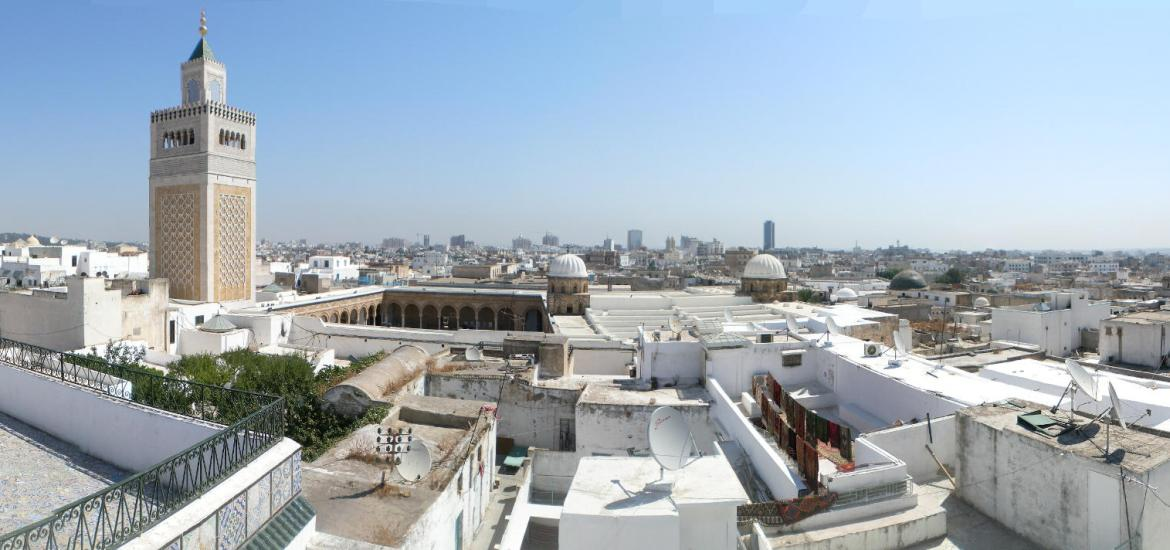 Photo de l'article De Carthage au Grand Tunis : Permanence du Fait Metropolitain