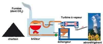charbon_biomasse
