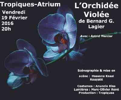 orchidee_violee